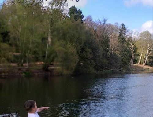 Nostell Priory Photo Competition